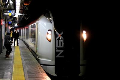 soku_31518.jpg :: 乗り物 交通 鉄道 電車 NEX