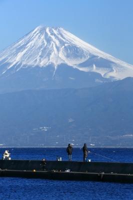 soku_31522.jpg :: 風景 自然 山 富士山