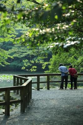 soku_31523.jpg :: 人物 老人 高齢者 公園 湖畔
