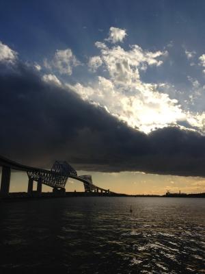 soku_31558.jpg :: 建築 建造物 橋 風景 街並み ランドマーク 東京ゲートブリッジ