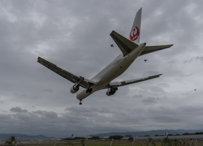 soku_31629.jpg :: 乗り物 交通 航空機 飛行機 旅客機