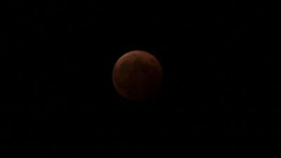 soku_31632.jpg :: 風景 自然 天体 月 皆既月食