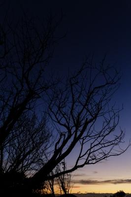 soku_31635.jpg :: EOS6D 夕焼け 風景