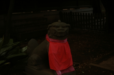 soku_31644.jpg :: 建築 建造物 神社 狛犬
