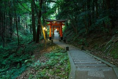 soku_31737.jpg :: 風景 建築 建造物 神社 鳥居