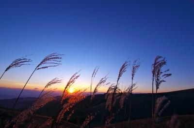 soku_31756.jpg :: 風景 自然 空 夕日 日没