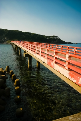 soku_31766.jpg :: 風景 福井 雄島 橋 海 自然 建造物 大湊神社