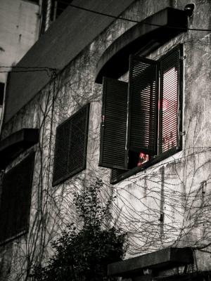 soku_31794.jpg :: 家 窓 植物 その他 つた