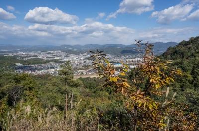 soku_31859.jpg :: 風景 自然 山 市街地 きづきの森