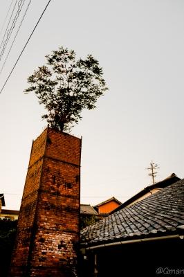 soku_31895.jpg :: レンガ 煉瓦 煙突 窯 風景 夕焼け 遺物 木
