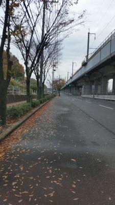 soku_31940.jpg :: 風景 自然 道路
