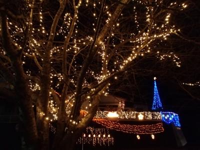 soku_31958.jpg :: クリスマス イルミネーション