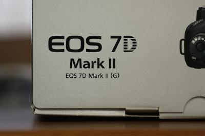 soku_32032.jpg :: EOS 7D MarkII カメラ機材 カメラ ピント比較