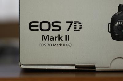 soku_32033.jpg :: EOS 7D MarkII カメラ機材 カメラ ピント比較