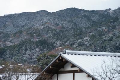soku_32115.jpg :: Sonnar T* 135mm F1.8 ZA SAL135F18Z 風景 自然 雪景色 雪山