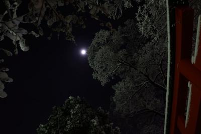 soku_32117.jpg :: 風景 自然 天体 月 雪景色