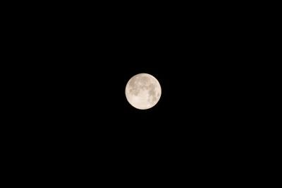 soku_32172.jpg :: 月 満月 風景 自然 天体 月 満月 スーパームーン