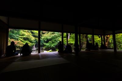 soku_32184.jpg :: 蓮華寺 和 和風 和室 和風庭園