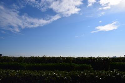 soku_32188.jpg :: 風景 自然 空 雲