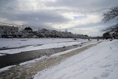 soku_32299.jpg :: 風景 自然 雪景色 河川