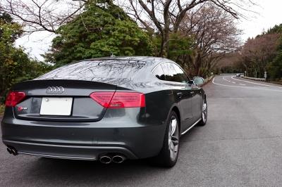 soku_32447.jpg :: 風景 郊外 車 ドライブ Audi S5 箱根ターンパイク 全開走行 G快感で脳が逝く