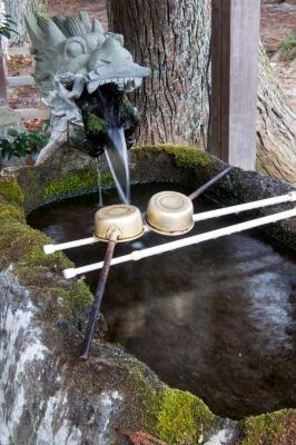 soku_32451.jpg :: 建築 建造物 神社 江ノ島神社 手水所 龍 ドラゴン