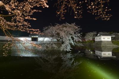 soku_32492.jpg :: 植物 花 桜 サクラ 夜桜 建築 建造物 城