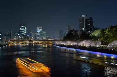 soku_32497.jpg :: 風景 夜景 大阪 大川 桜