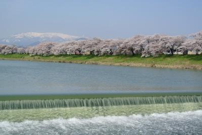 soku_32517.jpg :: 大河原 船岡 一目千本桜