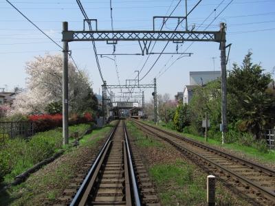 soku_32521.jpg :: 建築 建造物 線路 植物 花 桜 サクラ