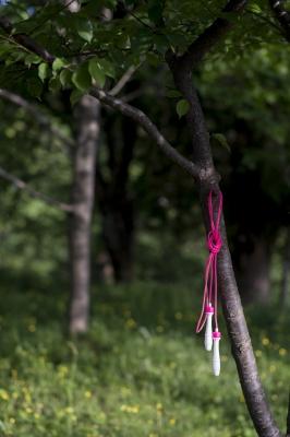 soku_32523.jpg :: 風景 自然 樹木 縄跳び
