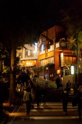 soku_32586.jpg :: 井の頭公園 夜景