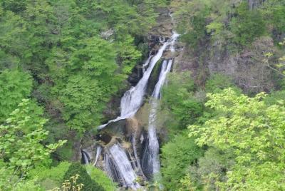 soku_32597.jpg :: 栃木県 風景 自然 滝