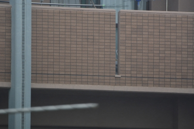 soku_32720.jpg :: 150.600mm F5.6.3 DG OS HSM Contemporary NIKON用 600mm SS320 F6.3 手ぶれ補正あり (小雨の中撮影) 資料 サンプル