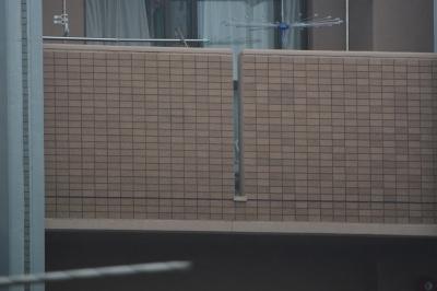 soku_32721.jpg :: 150.600mm F5.6.3 DG OS HSM Contemporary NIKON用 600mm SS400 F6.3 手ぶれ補正あり (小雨の中撮影) 資料 サンプル