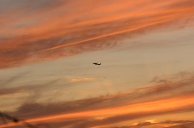 soku_32750.jpg :: 風景 自然 空 飛行機