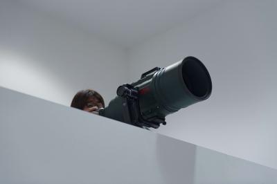 soku_32940.jpg :: D800 200-500 カメラ機材 レンズ