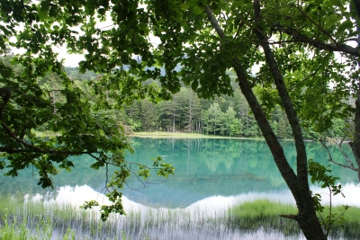 soku_32970.jpg :: オンネトー 風景 自然 湖 阿寒国立公園
