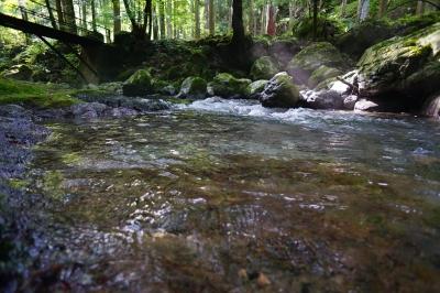 soku_33017.jpg :: 風景 自然 川 渓谷