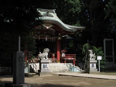 soku_33028.jpg :: 建築 建造物 神社 狛犬
