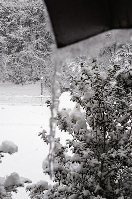 soku_33031.jpg :: 風景 自然 雪景色 氷柱 つらら スマフォ