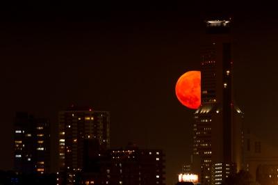 soku_33044.jpg :: 風景 街並み 都市の風景 ビル群 自然 天体 月 満月 スーパームーン