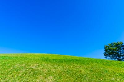 soku_33115.jpg :: 風景 空 丘 公園 青空