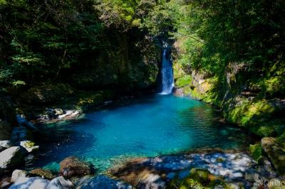 soku_33118.jpg :: 水分 滝 淵 にこ淵 仁淀川