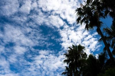 soku_33128.jpg :: 風景 自然 空 雲 青空