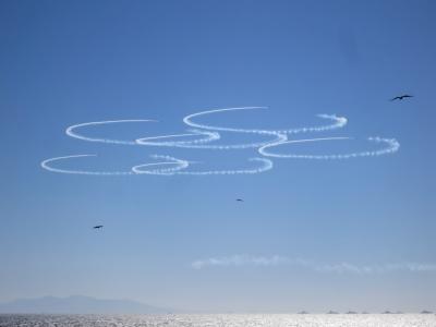 soku_33139.jpg :: 風景 自然 空 青空 ブルーインパルス T.4 動物 鳥 猛禽類 平成27年度 自衛隊観艦式 予行1