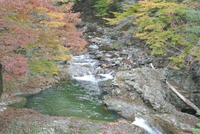soku_33147.jpg :: 風景 自然 紅葉 川
