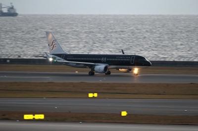 soku_33201.jpg :: 乗り物 交通 航空機 飛行機 旅客機 セントレア