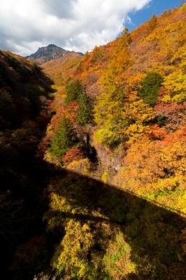 soku_33221.jpg :: 紅葉 風景 自然 山