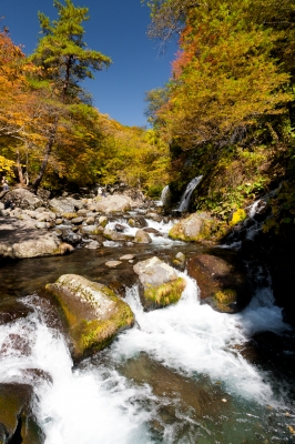 soku_33224.jpg :: 紅葉 渓流 滝